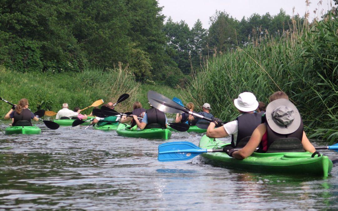Spływ kajakowy w Sektorze Wielkopolskim – Wełna – 08 czerwca 2019 r.